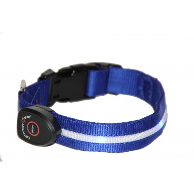 GG Dog Collar Blue