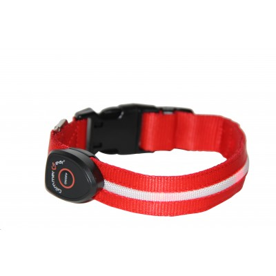 GG Dog Collar Red
